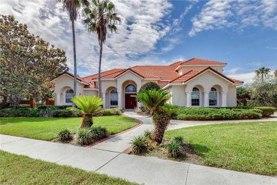 Orlando Single Family Home For Sale: 8712 Scenic Oak Court