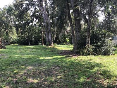 Mount Dora Residential Lots & Land For Sale: E 3rd Avenue
