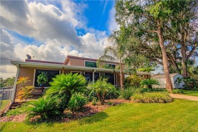 Osteen Single Family Home For Sale: 1147 Lemon Bluff Road