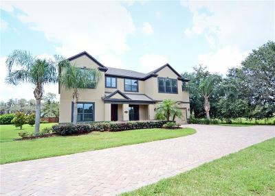 Orlando Single Family Home For Sale: 17100 Guilford Court