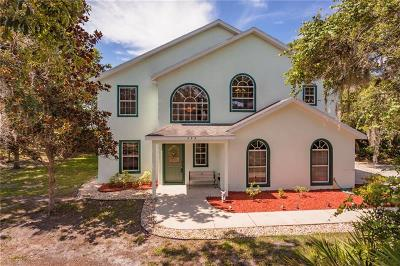 Debary Single Family Home For Sale: 399 Walrock Street