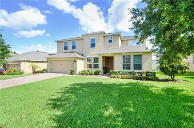 Apopka Single Family Home For Sale: 844 Galway Boulevard