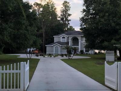 Pasco County, Hernando County Single Family Home For Sale: 14714 Coloma Lane