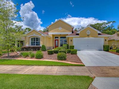 Mount Dora Single Family Home For Sale: 8977 Bridgeport Bay Circle