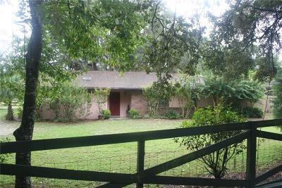 Winter Garden Single Family Home For Sale: 3421 Rex Drive