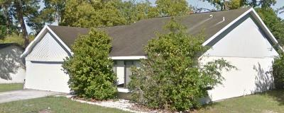 New Port Richey Single Family Home For Sale: 10421 Maverick Street