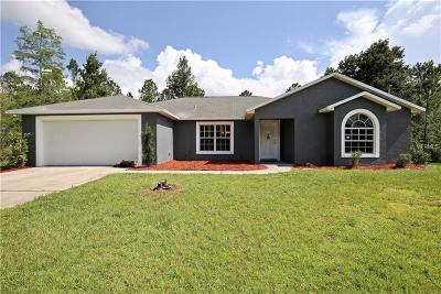 Orlando Single Family Home For Sale: 20398 Paddock Street