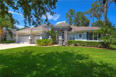 Hillsborough County Single Family Home For Sale: 810 River Hammock Boulevard