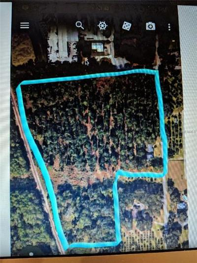 Deland  Residential Lots & Land For Sale: 980 S Beresford Road