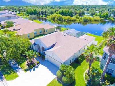 Single Family Home For Sale: 2600 Hobblebrush Drive