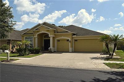 Wesley Chapel Single Family Home For Sale: 3531 Fortingale Drive