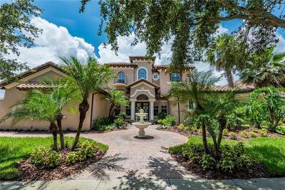 Orange County, Osceola County Single Family Home For Sale: 9108 Tintori Lane