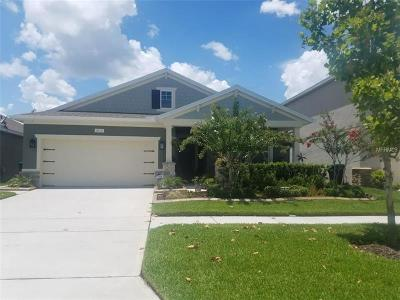 Celebration, Windermere, Winter Garden, Orlando Single Family Home For Sale: 1913 Siesta Falls Court