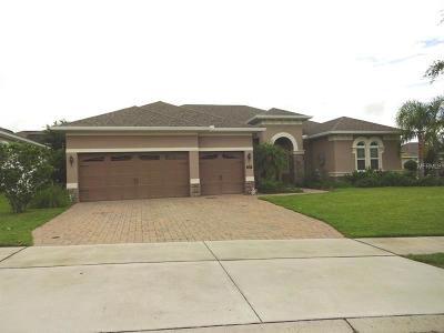 Groveland Single Family Home For Sale: 276 Chardonnay Lane