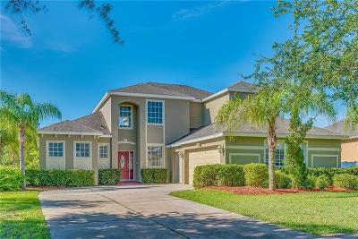 Mount Dora Single Family Home For Sale: 6224 Zane Drive