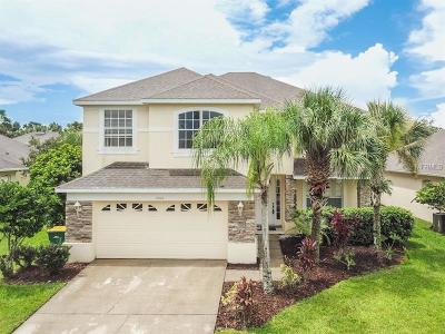 Kissimmee Single Family Home For Sale: 2602 Southpointe Court
