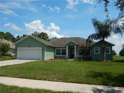 Clermont Single Family Home For Sale: 16541 Spring Park Drive