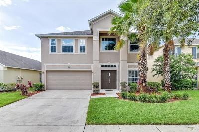 Orlando Single Family Home For Sale: 12515 Sawgrass Oak Street