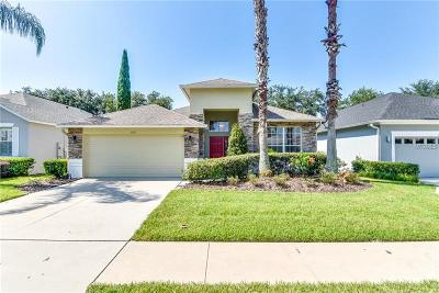 Mount Dora Single Family Home For Sale: 8032 Saint James Way