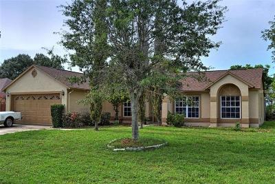 Deltona Single Family Home For Sale: 203 Heronwood Circle