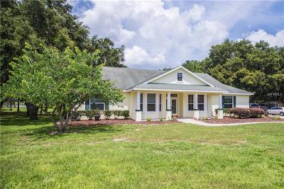 Clermont Single Family Home For Sale: 12703 Montevista Road