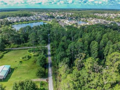 Wesley Chapel Residential Lots & Land For Sale: Clementine Lane