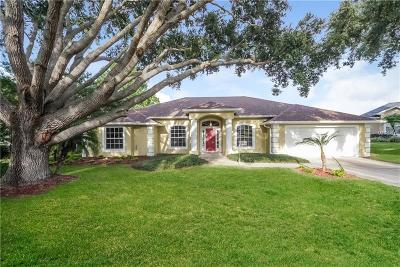 Clermont Single Family Home For Sale: 9516 White Sand Court