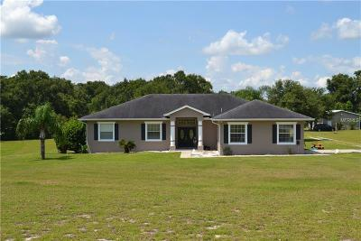 Deland Single Family Home For Sale: 3220 Oaklea Drive