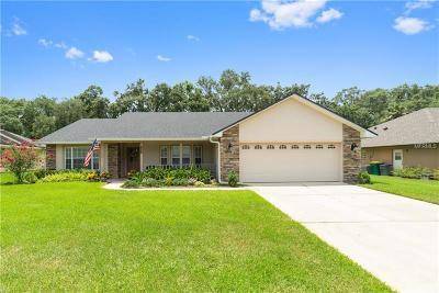 Saint Cloud Single Family Home For Sale: 138 Rachel Lin Lane