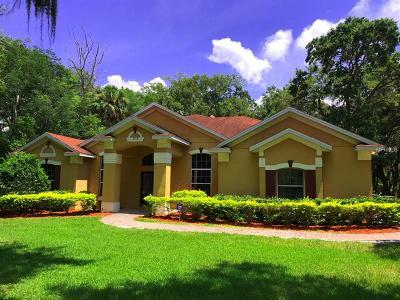 Winter Garden Single Family Home For Sale: 1118 Brick Road