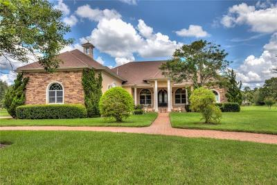 Winter Springs Single Family Home For Sale: 8609 Bow Court