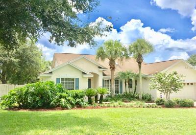 Clermont Single Family Home For Sale: 13714 Via Roma Circle