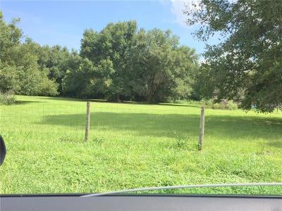 mount dora Residential Lots & Land For Sale: 0 Wright Avenue