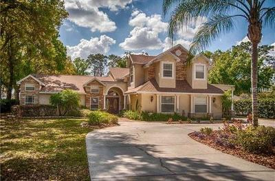 Lutz FL Single Family Home For Sale: $825,000