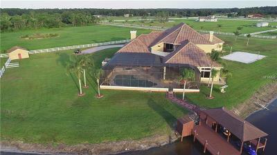 New Smyrna Beach Single Family Home For Sale: 700 Hammett Lane