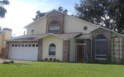 New Port Richey Single Family Home For Sale: 9178 Remington Drive