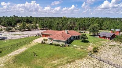 Deltona Single Family Home For Sale: 2421 Lake Street