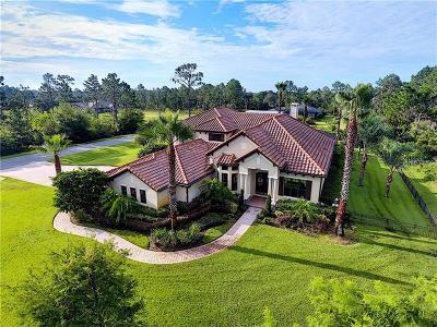 Orlando Single Family Home For Sale: 19438 Paddock Street