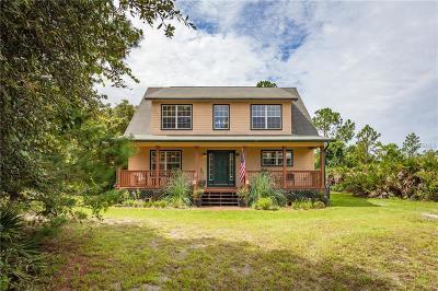 Deland Single Family Home For Sale: 32902 Chippewa Avenue