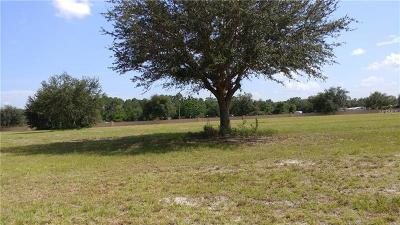 Mount Dora Residential Lots & Land For Sale: 4532 Claire Rose Court