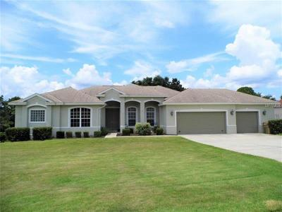 Clermont Single Family Home For Sale: 12561 Katherine Circle