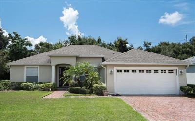 Grand Island Single Family Home For Sale: 13546 Biscayne Grove Lane