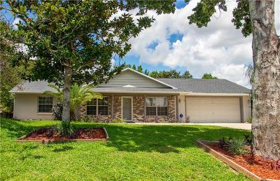 Deltona Single Family Home For Sale: 1198 N Old Mill Drive