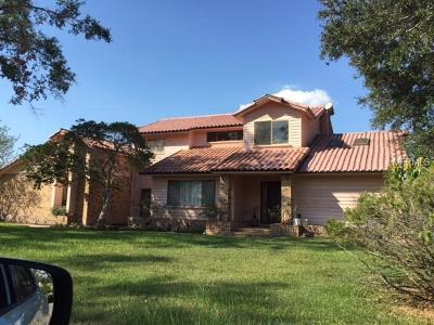 Orlando Single Family Home For Sale: 8609 S Bay Drive