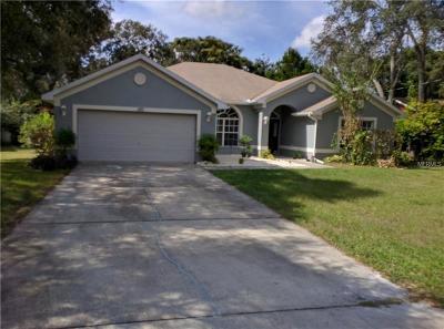 Spring Hill, Springhill Single Family Home For Sale: 1193 Sanger Avenue