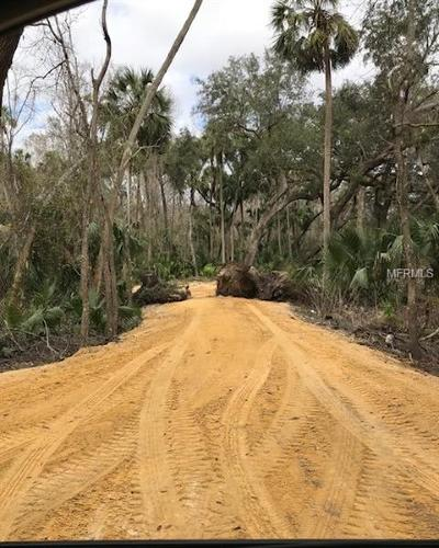 Deltona Residential Lots & Land For Sale: 1747 Turtle Hill Road