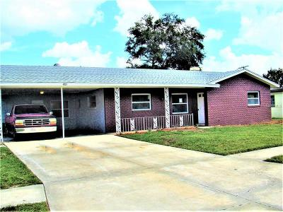Orlando Single Family Home For Sale: 4511 Fetrow Drive