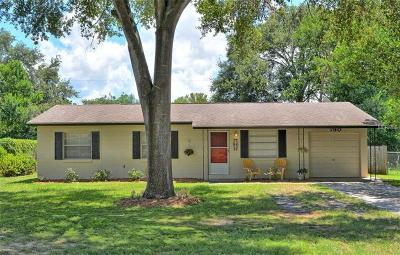 Mount Dora Single Family Home For Sale: 790 Marion Drive