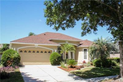 Orlando Single Family Home For Sale: 8097 Saint Andrews Circle