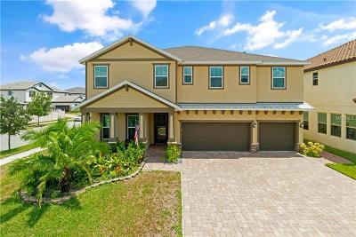 Orlando Single Family Home For Sale: 14247 Ward Road